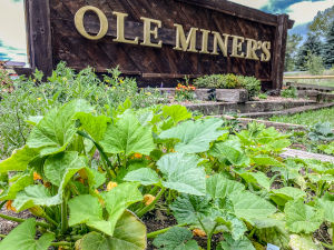 About: Ole Miner's Sign